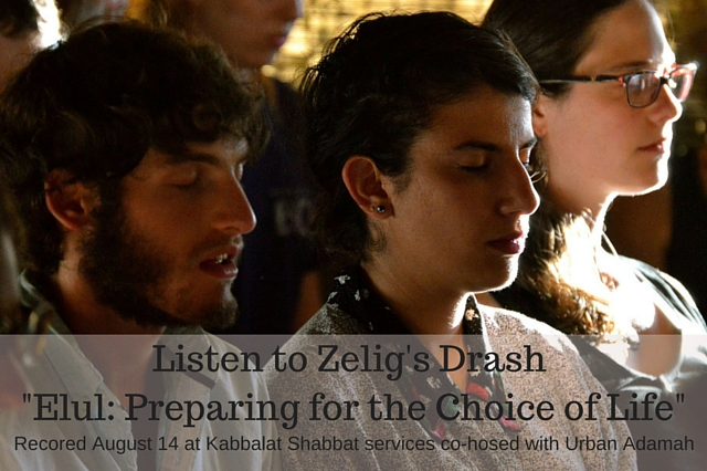 Elul: Preparing for the Choice of Life