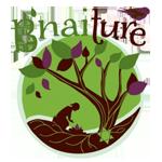bnaiture-logo